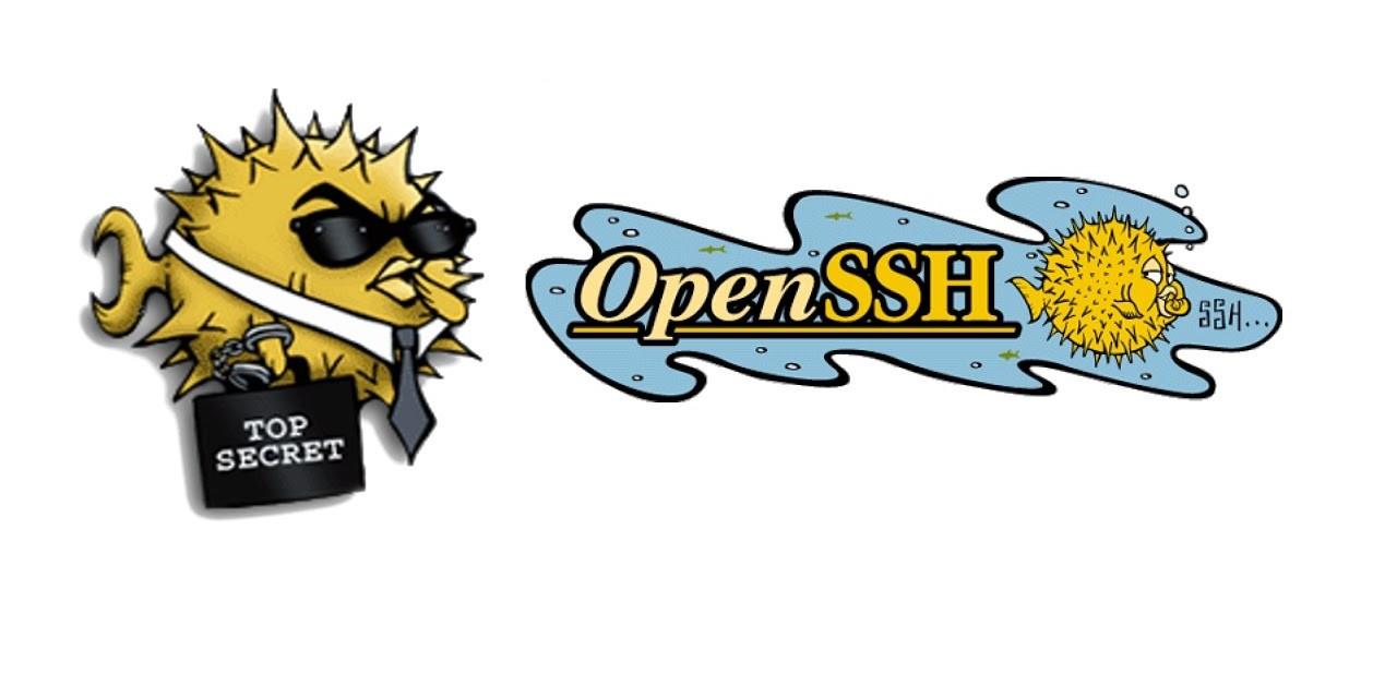 SSH Keys in openssh version 7.0+