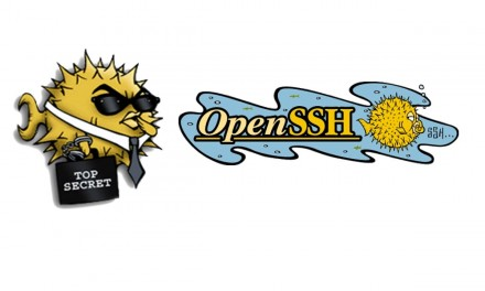 SSH Keys in openssh version 7.0+