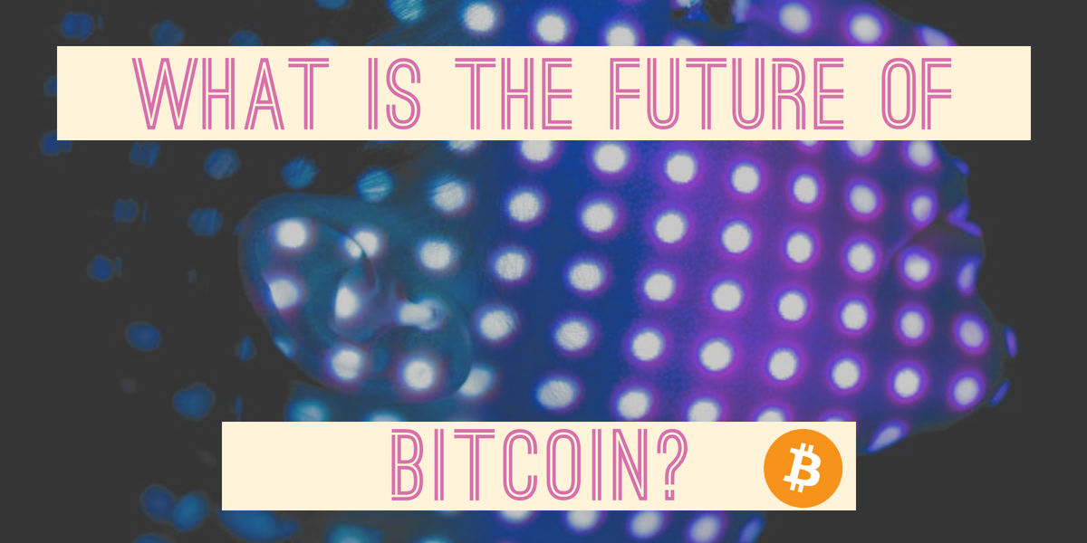 The future of Bitcoin is Bitcoin. Why?