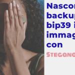 Bitcoin howto: nascondere backup bip39 in immagine steganografica